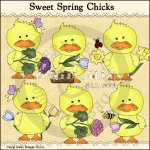 Sweet Spring Chicks